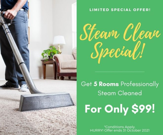 carpet-cleaning-special
